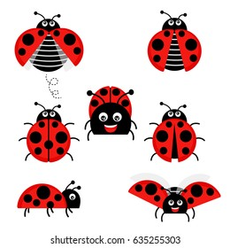 cartoon ladybird images stock photos vectors shutterstock rh shutterstock com cartoon ladybug pics cartoon ladybug pics