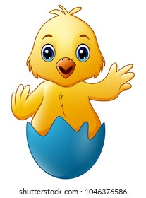 Cartoon little baby chicken in the blue broken egg shell