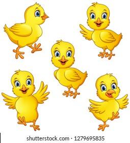 Cartoon little chicks collection set