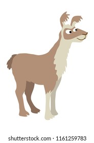 Cartoon llama illustration