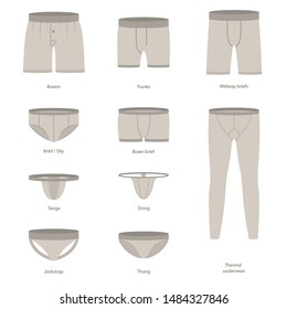 Cartoon Male Underwear Different Types Icon Set Include of Boxer, Trunk, Briefs and Jockstrap. Vector illustration of Icons