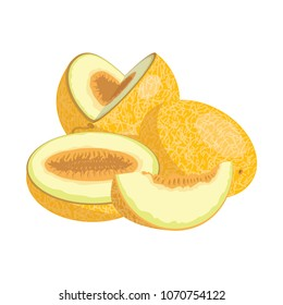 Cartoon melon. Juicy sliced fruit. Drawing for children. Illustration on white background.