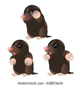 Cartoon mole. Vector illustration.