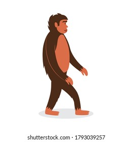 Cartoon monkey or ape standing or walking isolated on white background. Side view of jungle animal with brown fur. Wild gorilla - flat vector illustration