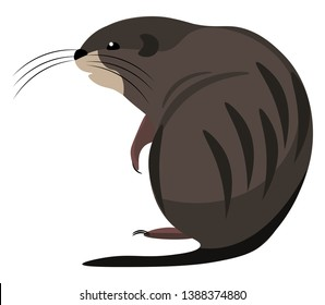 Cartoon muskrat brown in color  with long tails and covered with oval-shaped scales  long whiskers sits on the ground  vector  color drawing or illustration