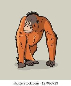 Cartoon Orangutan ape - vector illustration