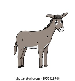 Cartoon outline donkey illustration on white background. Vector doodle single isolated hand drawn farm gray animal smiles, looks to the camera, side portrait view for children book