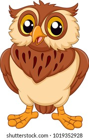 Cartoon Owl Images Stock Photos Amp Vectors Shutterstock
