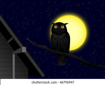 cartoon owl on the branch