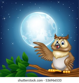 Cartoon owl on a tree branch in the night