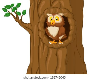 Cartoon Owl In Tree