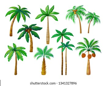 Cartoon palm tree. Jungle palm trees with green leaves, coconut beach palms isolated vector set