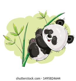 cartoon panda hanging on a palm branch on a white background