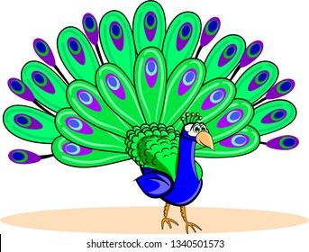 Cartoon peacock revealed the tail of colorful feathers on white background.
