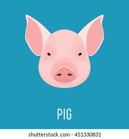 Cartoon pig portrait isolated on blue. for card, book, invitation, poster, banner. Farm domestic animal.