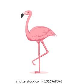 Cartoon pink flamingo isolated on white background, illustration.