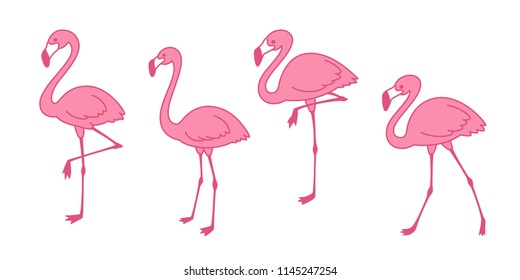 Cartoon pink flamingo vector set Cute flamingos collection Flamingo character animal exotic nature wild fauna illustration