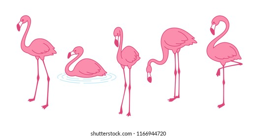 Cartoon pink flamingo vector set icon Cute flamingos collection Flamingo character animal exotic nature wild fauna illustration doodle