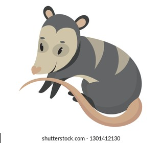Cartoon possum.Vector illustration of possum. Drawing animal for children. Zoo for kids.
