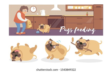Cartoon pugs in different poses and a woman in the kitchen. Vector illustration.