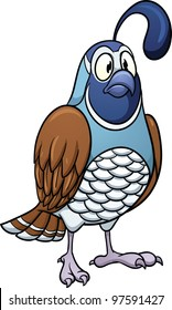 Cartoon quail. Vector illustration with simple gradients. All in a single layer for easy editing.
