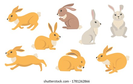 Cartoon rabbits set. Furry hares of different colors, cute Easter bunnies standing, sitting, running, jumping, sleeping. Vector illustration for farming, animals, pets, nature concepts