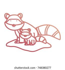 cartoon raccon icon