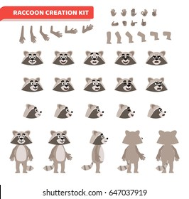 Cartoon raccoon creation set. Various gestures, emotions, diverse poses, views. Create your own pose, animation. Flat style vector illustration