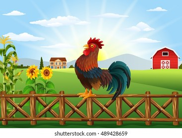 Cartoon rooster crowing at farm field in the morning with sun rising
