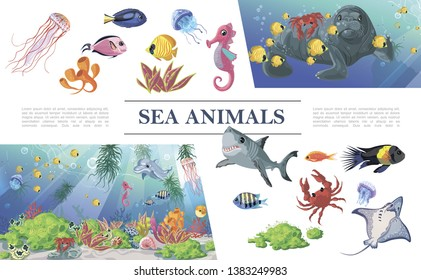 Cartoon sea animals composition with shark colorful fishes jellyfishes dolphin seal stingray seahorse crab seaweeds corals vector illustration