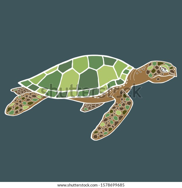 Cartoon Sea Turtle Realistic Drawing Detailed Stock Vector
