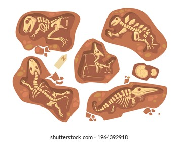 Cartoon set of different dinosaur fossils. Flat vector illustration. Collection of prehistoric reptile skeletons and bones lying underground. Paleontology, archeology, dinosaur, excavation concept