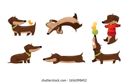Cartoon Short-legged Dachshund Character with Long Body Sleeping and Juggling with Balls Vector Set