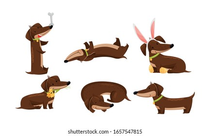 Cartoon Short-legged Dachshund Character with Long Body Curling up and Juggling with Bone Vector Set