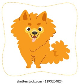Cartoon sitting dog: pomeranian Spitz. Vector illustration. Isolated on white background.
