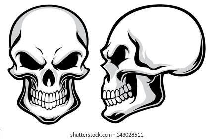 Skeleton Head Images, Stock Photos & Vectors | Shutterstock
