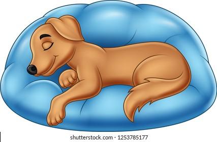 Cartoon Sleep Dog