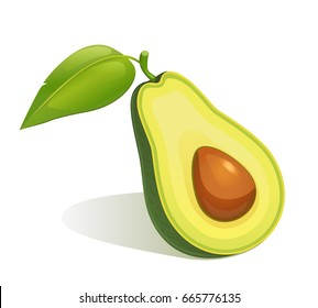 Cartoon slice of avocado with core and leaf isolated on the white.