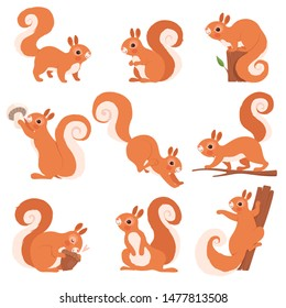 Cartoon squirrel. Funny forest wild animals running standing and jumping vector squirrel clip art collection