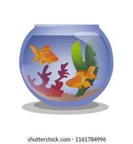 Cartoon style aquarium with two golden fish isolated on white background.Vector illustration.