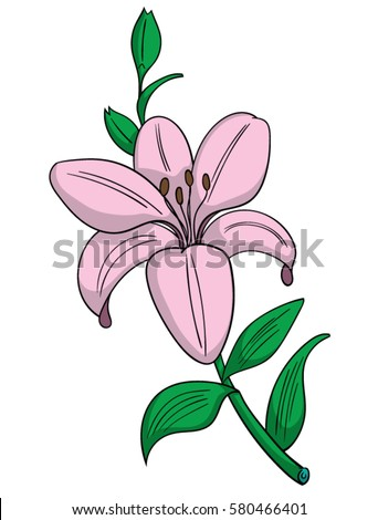 Cartoon Style Pink Lily Flower Stock Vector Royalty Free 580466401