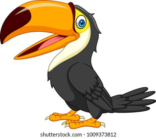 Cartoon toucan isolated on white background