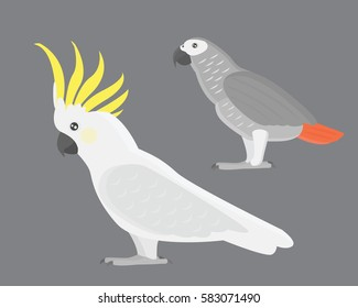 Cartoon tropical cockatoo parrot wild animal bird vector illustration.