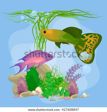 Cartoon Tropical Fish Swimming Nature Undersea Stock Vector Royalty