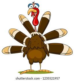 Cartoon Turkey Vector Illustration