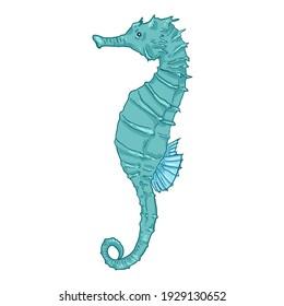 Cartoon Turquoise Seahorse Vector Illustration