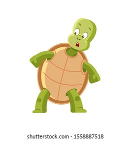 Cartoon turtle afraid. Frightened, confused, embarrassed, puzzled, bewildered, discouraged, cowardly, terrified, emotions in the turtle. Vector clip art isolated illustration.
