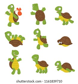 Cartoon turtle. Cute tortoise wild animal vector characters isolated. Turtle wildlife, terrapin wild and slow illustration