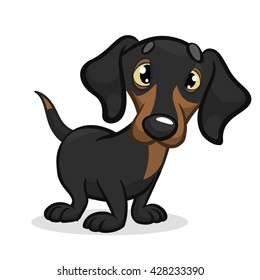 Cartoon Vector Illustration of Cute Purebred Dachshund Dog. Isolated on white background