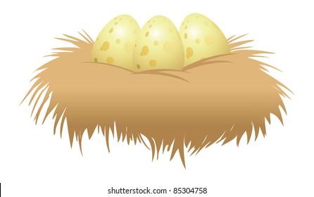 cartoon vector illustration of eggs and nest